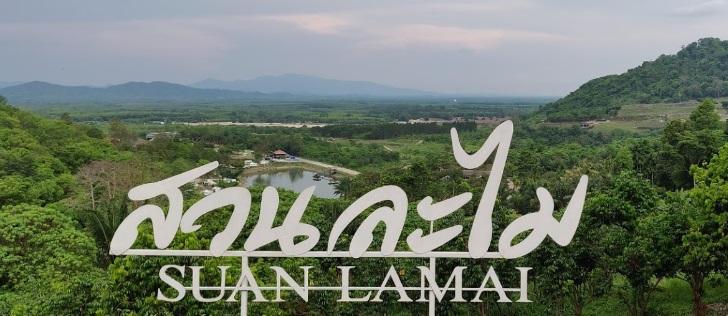 SUAN LAMAI